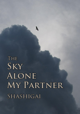 Book cover mockup with a stormy sky and a single winged silhouette flying out of the clouds